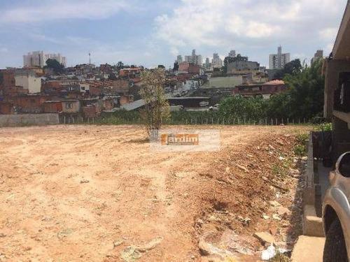 Terreno Residencial À Venda, Jardim Das Palmas, São Paulo. - Te0570