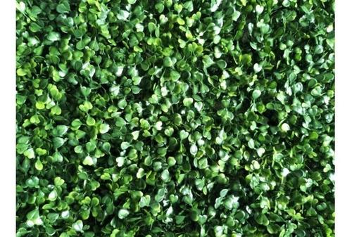 Imagen 1 de 3 de Muro Verde Jardin Vertical 60 X 40 Cm