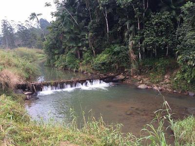 Terreno Rural À Venda, Zona Rural, Ilhota - Te0288. - Te0288