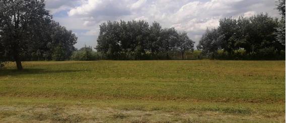 Santa Irene Comarcas De Lujan 2.000 M2.