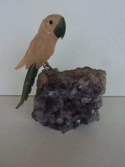 Pedra-pássaro:base Ametista:decoração:original