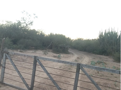 Campo Salta Morillo