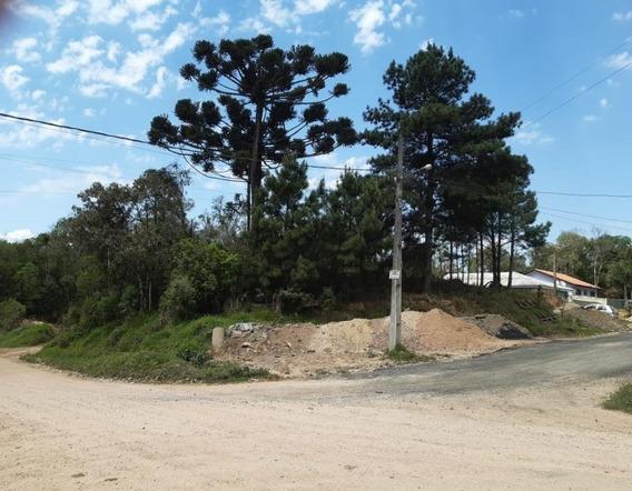 Terreno Em Del Rey, São José Dos Pinhais/pr De 0m² À Venda Por R$ 135.000,00 - Te333627