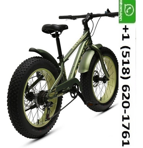 Alloy Single Wall Adult Fat Bike With Steel Straight Type