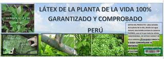 Planta De La Vida Latex 100% Comprobado Y Garantizado