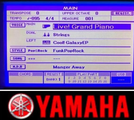 Display Lcd Do Teclado Yamaha Psr S550,s650,s670 É S500 Novo