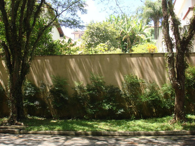Terreno Com Horta Plantada - Te8825