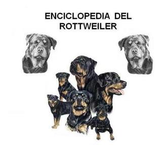Enciclopedia Del Rottweiler, Adiestramiento Canino, Cachorro