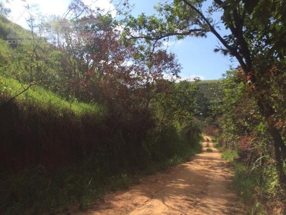 Rural Para Venda, 1 Dormitórios, Três Porteiras - Paty Do Alferes - 1517