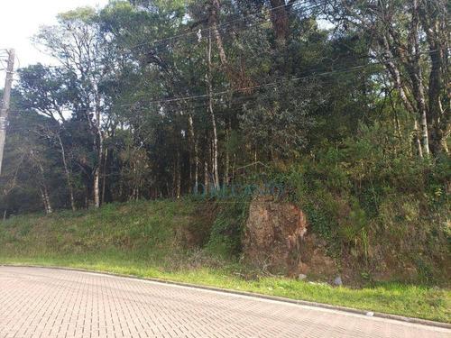 Terreno À Venda, 422 M² Por R$ 340.000,00 - Vivendas Do Arvoredo - Gramado/rs - Te0729
