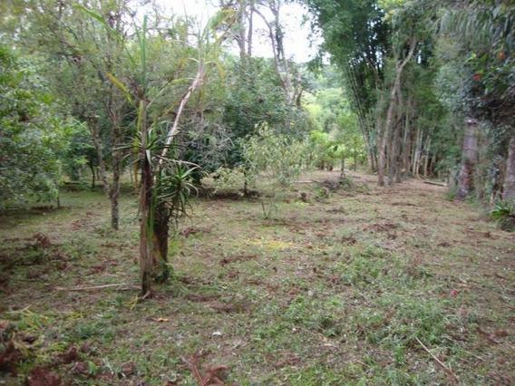 Chácara Para Venda Em Itapecerica Da Serra, Itaquaciara, 2 Dormitórios, 1 Banheiro - 173_2-324829