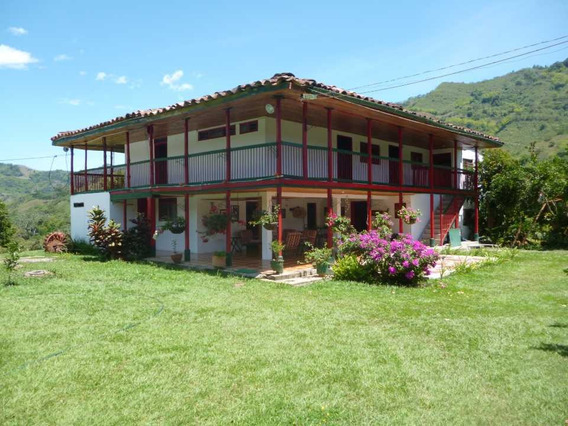 Hacienda San Jorge En Quimbaya