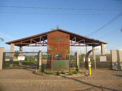 Terreno Residencial À Venda, Taquaral, Rio Das Pedras. - Te0182