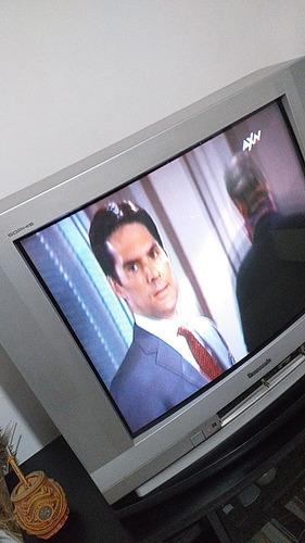Televisor Panasonic 29 Pulgadas Usado