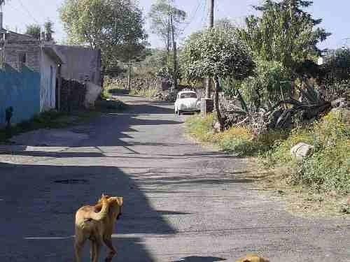 Terreno Con Vista Panoramica En Cerrillos Tulyehualco