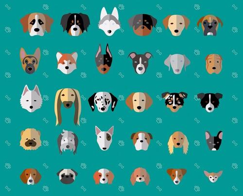 Imagen 1 de 1 de Pension Canina. Zona Oeste. Guardería ( Ramos Mejía ) Paseos