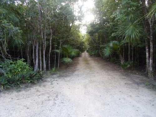 Terreno En Venta En Bosques De Cancún