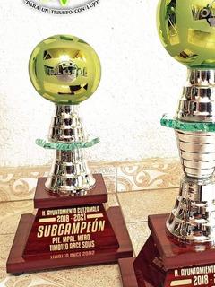 Trofeo Voleibol 2do Lugar