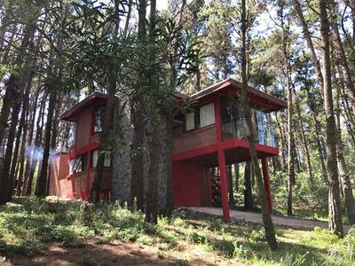 Casa Ohana En Mar Azul, Cabaña En El Bosque