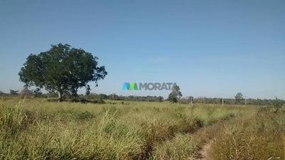 Fazenda 525 Ha Pirapora (mg) - Cod: Mta731