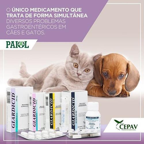 giardia gatos tratamento
