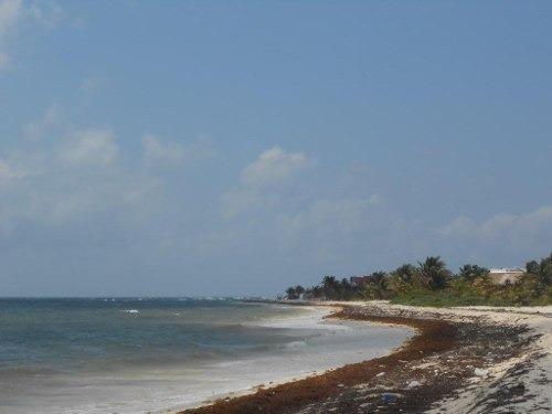Se Vende Terreno Frente Al Mar Mahahual-rio Indio P1200