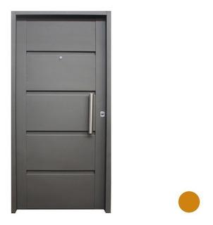 Puerta Inyectada De Seguridad Con Manijón De Acero Inox