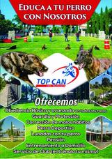 Hotel Y Escuela De Adiestramiento Canino Profesional