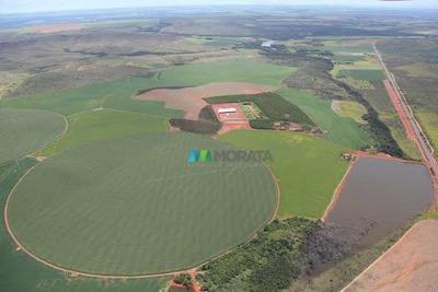 Excelente Fazenda - 1100 Ha - Região São Gabriel (go) - Codigo: Fa0022 - Fa0022
