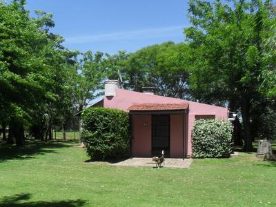 Alquilo Casa De Campo Temporario Ó Permanente