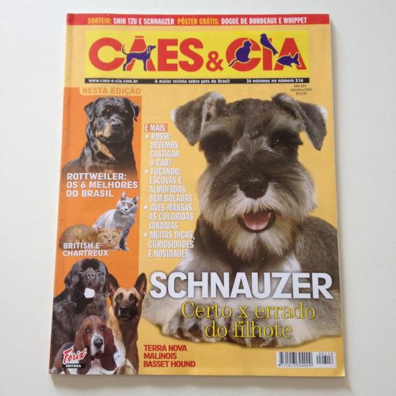 Revista Cães E Cia Schnauzer Certo X Errado Do Filhote D556