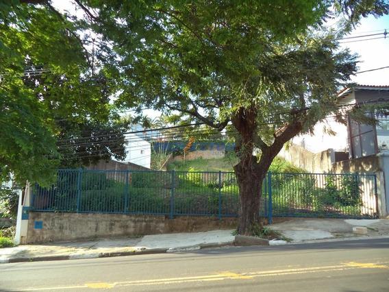 Terreno Á Venda E Para Aluguel Em Nova Campinas - Te251908