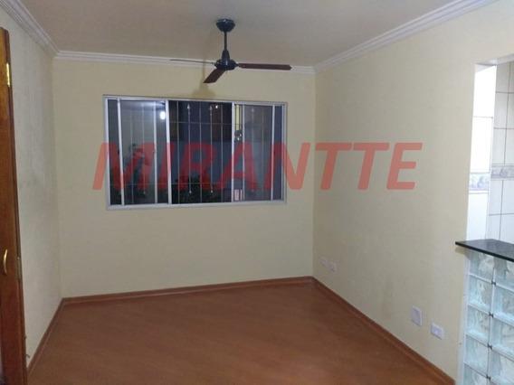 Apartamento Em Lauzane Paulista - São Paulo, Sp - 340742