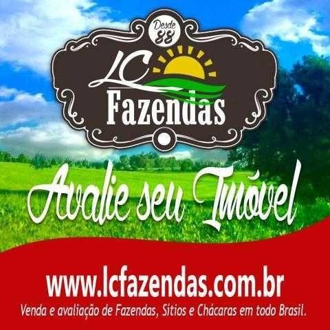 Avaliação Fazenda, Imobiliária Especializada Em Avaliações De Imoveis Rurais - 7567