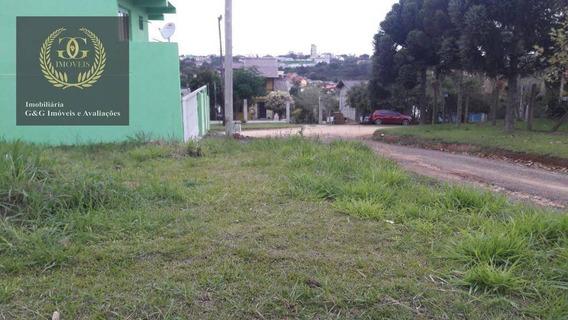 Terreno Residencial À Venda, Tarumã, Viamão. - Te0081