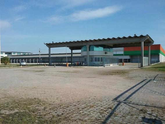 Barracão Para Locação Em Curitiba, Uberaba - 7032
