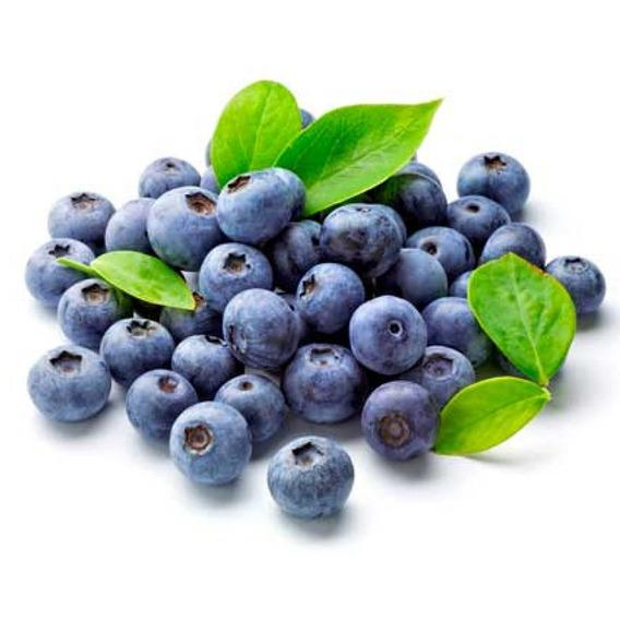 Blueberry Mirtilo 60 Sementes Para Mudas P/ Vasos E Jardins
