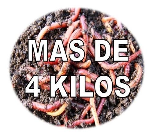 Imagen 1 de 1 de Promo Especial Mas De 4 Kilos Entre Lombriz Y Sustrato