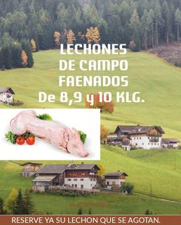 Lechónes Faenados A $ 15 El Kilo Disponemos Todo El Año