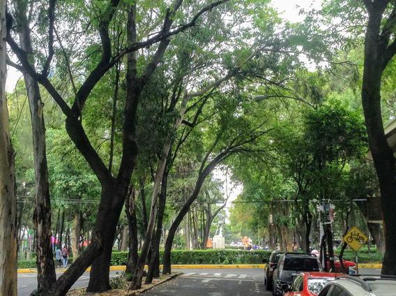 Orizaba Y Colima | Renta | 2 Niveles