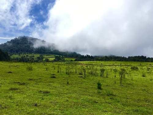 Rancho En los Pozos, Cerro Gordo