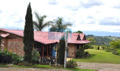 Finca Cafetera En Piendamo Cauca