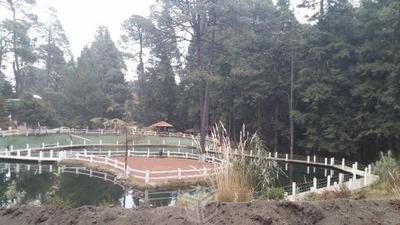 Terreno Campestre Buenavista Villa Turistica Con Escrituras