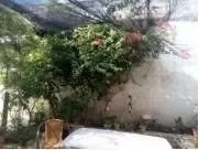 Casa Paso Molino,teja,belveder 6 Dorm Apto Fondo Oportunidad