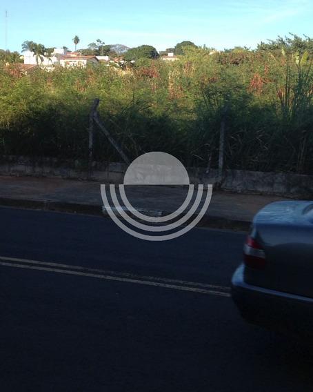 Terreno À Venda Nova Campinas - Te00184 - 32624056