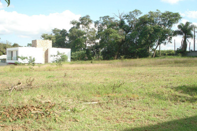 Terreno Em Condomínio De Alto Padrão Em Sofisticada Alameda Da Granja Viana - Te1323