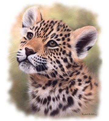 Playeras Yazbek Estampadas Transfer Animales Caballos Jaguar