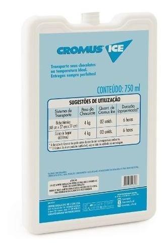 Gelo Em Gel Reutilizável P/bolsa Termica/ Cx Isopor 750ml 6h