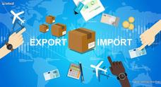 Importaciones Y Exportaciones, Asesoría Profesional
