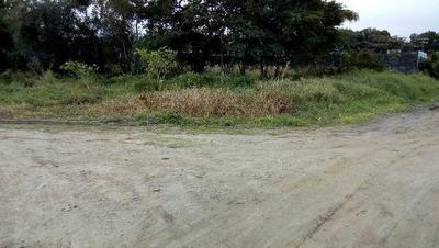 Terreno Em Itanhaém Lado Morro Com 420m² Ref 4518